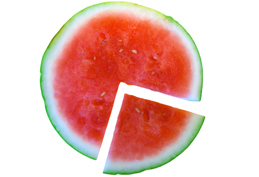 image of watermelon and slide