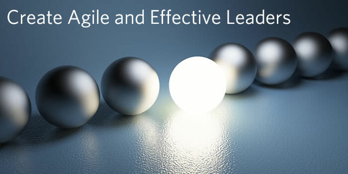 create-agile-leaders-2