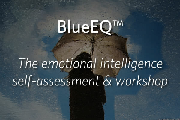 BlueEQ - the emotional intelligence self-assessment & workshop