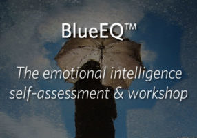 BlueEQ - the emotional intelligence self-assessment & workshop