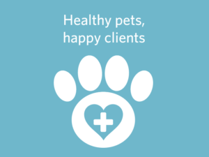 Reinventing the client experience at VCA Animal Hospitals