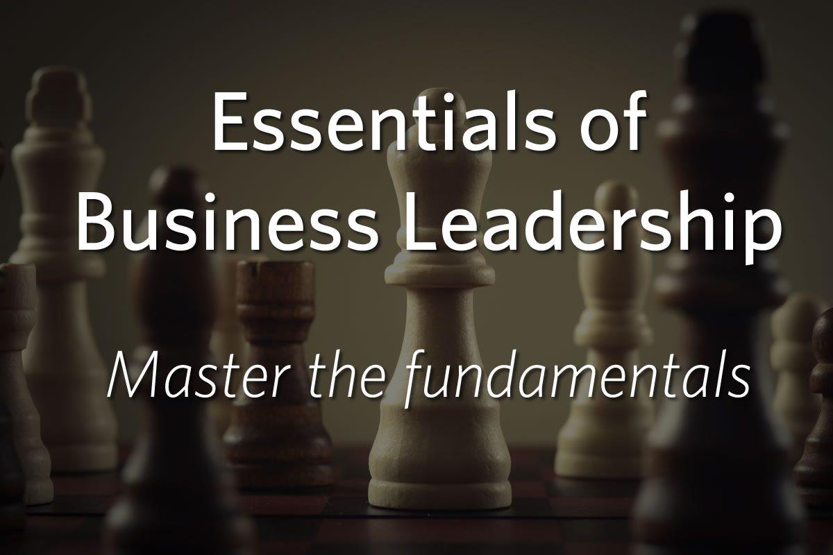 Essentials of Business Leadership: Master the Basics
