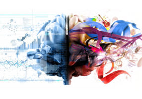 webinar on emotional intelligence - illustration of left and right brsain